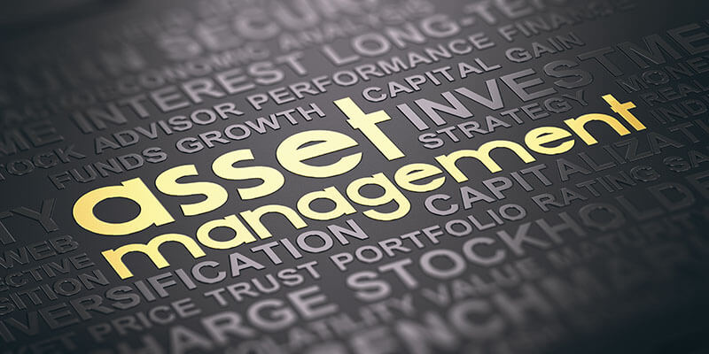 Asset management for foundations - lettering Asset Management in gold surrounded by other important terms